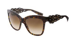 Gafas de sol D&G DG4264 Marrón Mariposa
